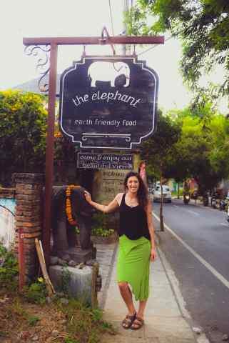 The Elephant-2